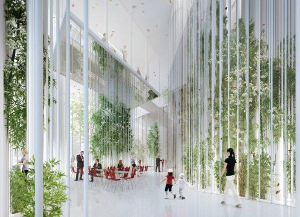 Studio Seilern wins AJ Future Reception competition